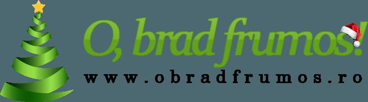 O Brad Frumos